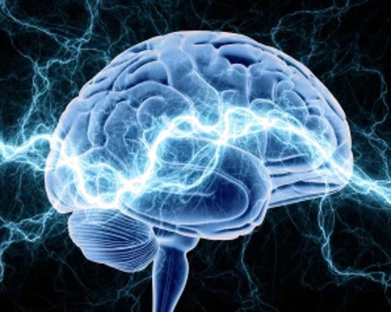 L'attività elettrica dei neuroni emerge e varia nel tempo