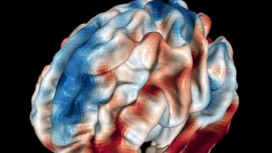 Onde nel cervello umano