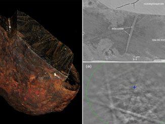 Nuovo materiale edscottite scoperto nel meteorite Wedderburn