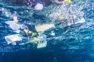 Batteri eliminano il fluoro presente nelle plastiche