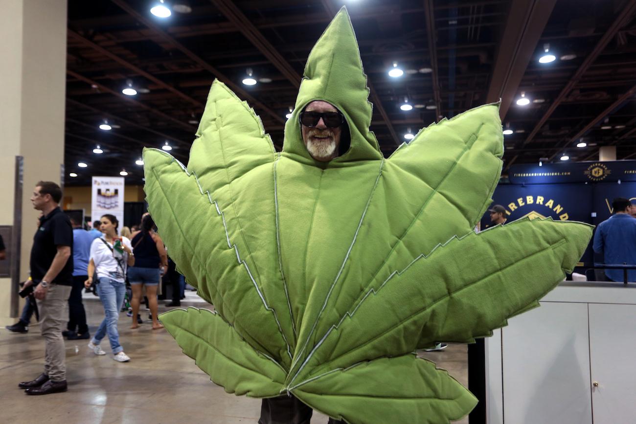 Legalizzata la produzione di cannabis ricreativa a San Marino