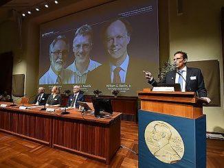 Il premio Nobel 2019 allo studio dell'ossigeno cellulare