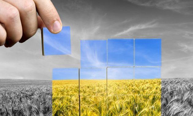 Giornata Mondiale dell'Alimentazione: il peso e le cause delle perdite di cibo, nelle prime fasi della catena produttiva.|Shutterstock