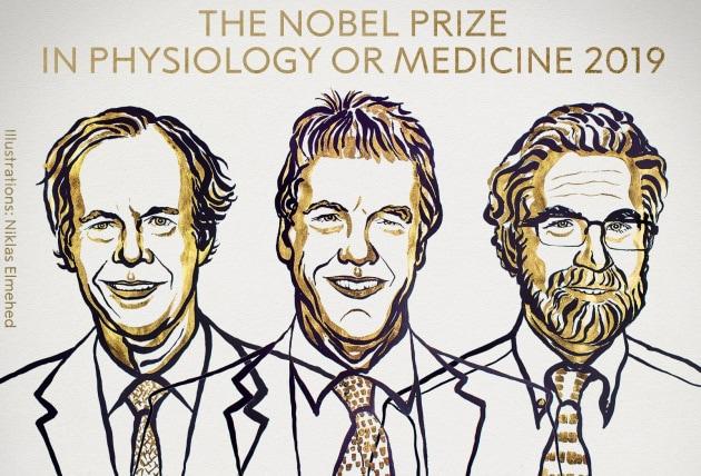William G. Kaelin Jr., Sir Peter J. Ratcliffe e Gregg L. Semenza: i vincitori del Nobel 2019 per la Fisiologia.|Niklas Elmehed