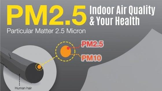 PM2.5 Polveri sottili