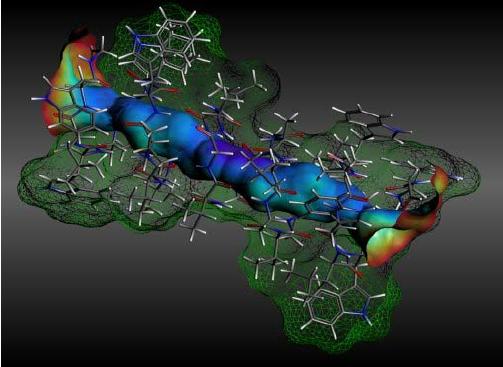 Molecole di gramicidina si comportano come un'onda quantistica