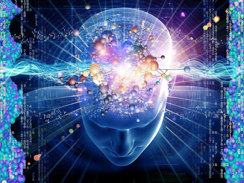 Studio per la ricerca dell'origine quantistica della coscienza