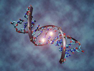 Il DNA modificato non protegge dall'HIV