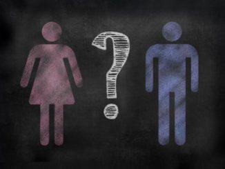 Identità di genere, teoria multisenso sulla disforia di genere