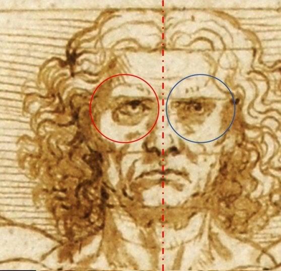 Il segreto dell'Uomo Vitruviano è nell'algoritmo della Divina proporzione