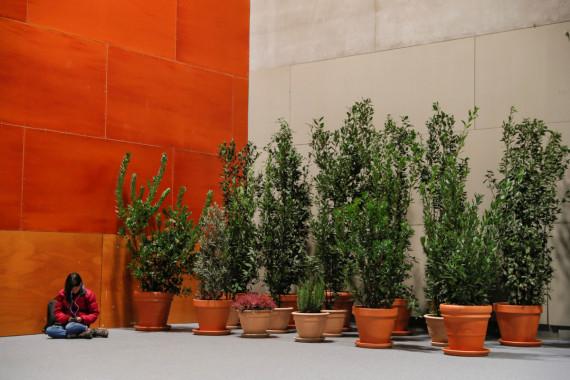 La riforestazione è considerata lo strumento più efficace per il sequestro di CO2 dall'atmosfera. Una giovane partecipante controlla il cellulare accanto a una serie di piante, negli edifici che hanno ospitato il vertice di Madrid.| SUSANA VERA/REUTERS