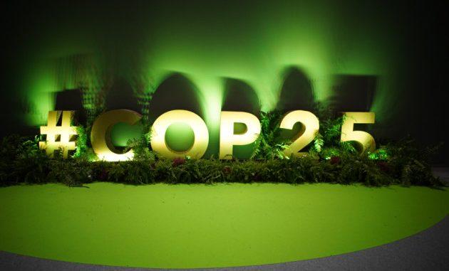 Si chiudono i battenti della COP25 di Madrid. A che cosa è servita?|SHUTTERSTOCK