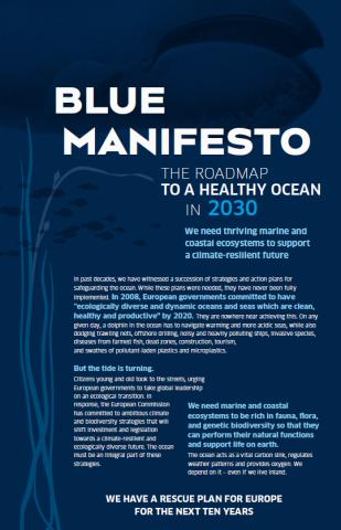 """il """"Manifesto blu"""", un piano per salvare gli oceani entro il 2030."""
