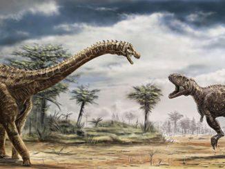 Nuova specie di dinosauro in rocce studiate per più di 150 anni