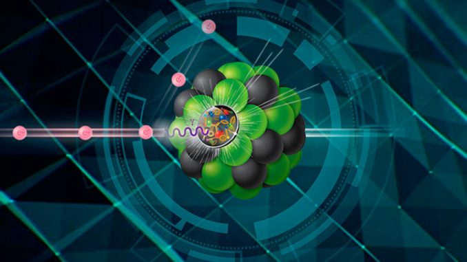 Electron Ion Collider (EIC)