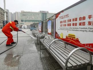Il nuovo virus cinese è stato trasmesso dai pipistrelli