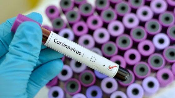 Coronavirus SarsCoV2