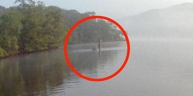 Ritrovato misterioso scheletro gigante è il mostro di Lokness