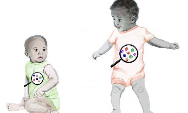 Quali fattori influiscono sulla risposta del sistema immunitario? Rispondere a questa domanda migliorerà l'efficacia delle campagne vaccinali. | Image courtesy of Dr Natalia Guimaraes Sampaio for the Babraham Institute