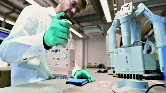 """Un anticorpo inibisce la proteina """"spike"""" del coronavirus"""
