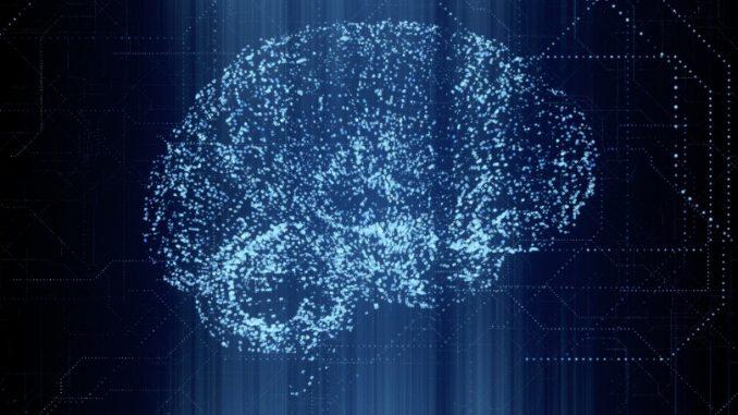 EDUARD MUZHEVSKYI / SCIENCE PHOT / EMZ / SCIENCE PHOTO LIBRARY - Cervello umano