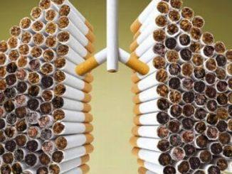 Ecco come pulire i polmoni dal fumo con i rimedi naturali