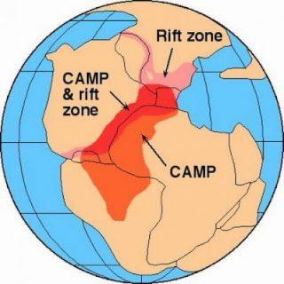 La più grande estinzione della storia provocata da un buco nell'ozono