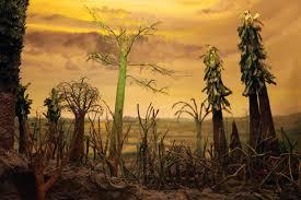 201 milioni di anni fà i livelli di CO2 erano simili agli attuali