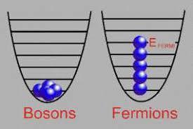 I bosoni espansi si comportano come fermioni