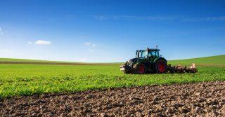 Meno pesticidi, più bio: i piani della Ue per un'agricoltura sostenibile