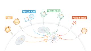 La corsa ai vaccini coronavirus: una guida grafica