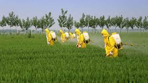 L'obiettivo della UE di eliminare l'uso dei fitofarmaci in agricoltura
