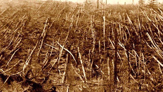 Anni dopo l'evento, furono visibili, e lo sono ancor oggi, in Tunguska, gli effetti del cataclisma.