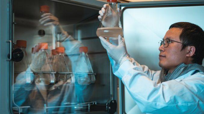 Come funziona il SARS-CoV-2 ed il futuro della pandemia