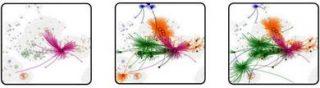 """La ricerca di Neil Johnson e collaboratori ha mappato la comparsa sul forum 4chan, a dicembre, di un contenuto ingannevole su una malattia simile alla polmonite, forse COVID-19. A gennaio da 4chan (<em>viola</em>) il contenuto si era diffuso in altre piattaforme di social media – Gab (<em>verde</em>), Telegram (<em>arancione</em>) e Facebook (<em>blu</em>) – tramite link che collegavano le pagine tra <span lang=""""it-IT"""">le diverse piattaforme (Da </span><a href=""""https://arxiv.org/search/physics?searchtype=author&query=Vel%C3%A1squez%2C+N""""><span lang=""""it-IT"""">N. Velásquez </span><span lang=""""it-IT"""">et al.</span></a><span lang=""""it-IT"""">)"""