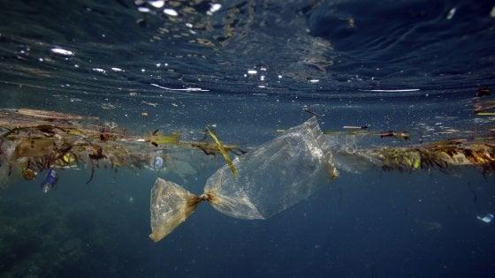 Oceani, perché il pericolo viene dalle microplastiche