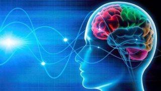 Così il cervello ci aiuta a capire le azioni degli altri