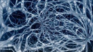 """Vicini al """"cervello ibrido"""", la prima rete neuronale che mima l'attività cerebrale"""
