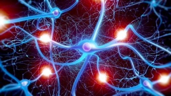 Microchip bioibrido si collega ai neuroni del cervello