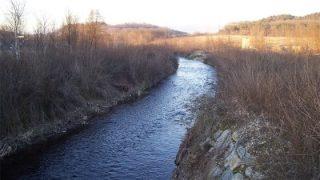 Il fiume Seveso (foto: Mauro Lunardi, via Wikimedia Commons)