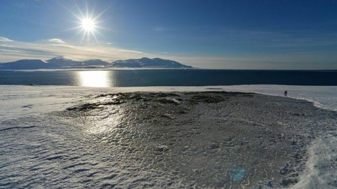 Tonnellate di petrolio riversate nel Mar Glaciale Artico