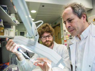 Il professor Andrea Crisanti con un suo collaboratore