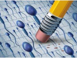 Scoperto nuovo ormone per la cura dell'infertilità maschile