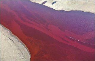Le acque del fiume Ambarnaya (Fonte: ajonoas.it)