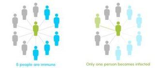 Quando un numero sufficiente di persone è immune, il virus ha poche opportunità di diffondersi (© Lucy Reading-Ikkanda/Quanta Magazine)