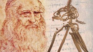 Grafica per evocare l'incontro di Leonardo con lo scheletro di balena fossile. La balena in immagine è stata ritrovata a Castelfiorentino oggi esposta nella sede GAMPS a Badia a Settimo (Firenze)