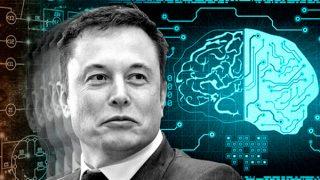 Neurolink: il nuovo prestigioso progetto di Elon Musk