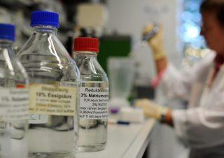 Malattie rare: studio identifica origini corea di Huntington