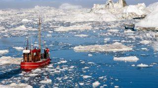 Crostacei contaminati da microplastiche: la triste scoperta italiana nel mar Artico