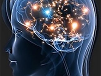 L'infezione da coronavirus impatta negativamente sul cervello